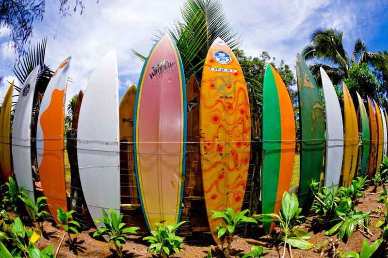 Fence made of surfboards on Maui