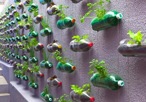 Urban Garden Design Idea