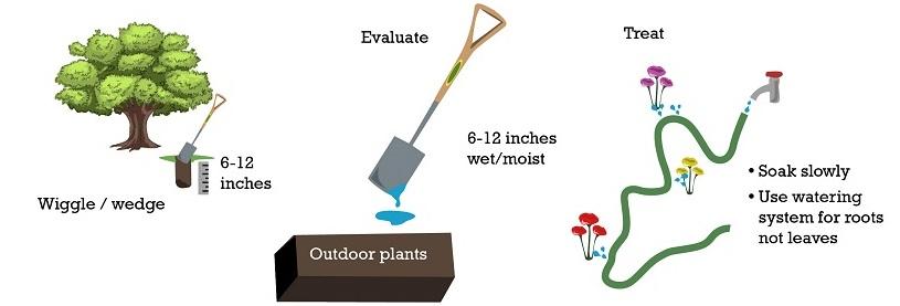 How to test for soil moisture