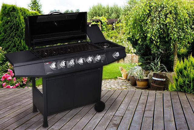 Fireplus Cosmo Grill 6 1 Burner Gas Bbq Critical Review