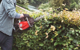 hedge-trimmer2