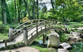 Beautiful Bridge in Garden