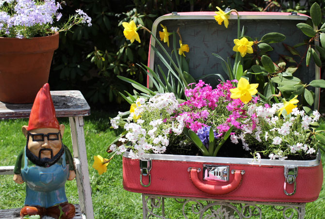 Vintage Suitcase in the Garden