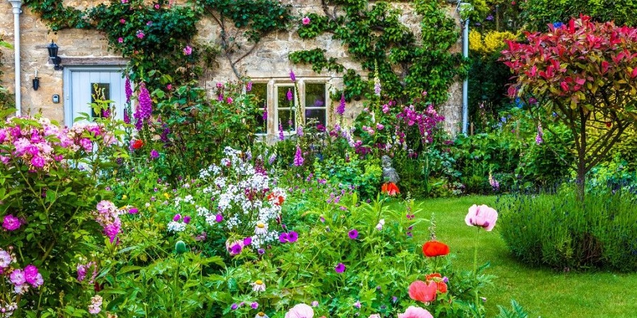 Cottage Garden Example