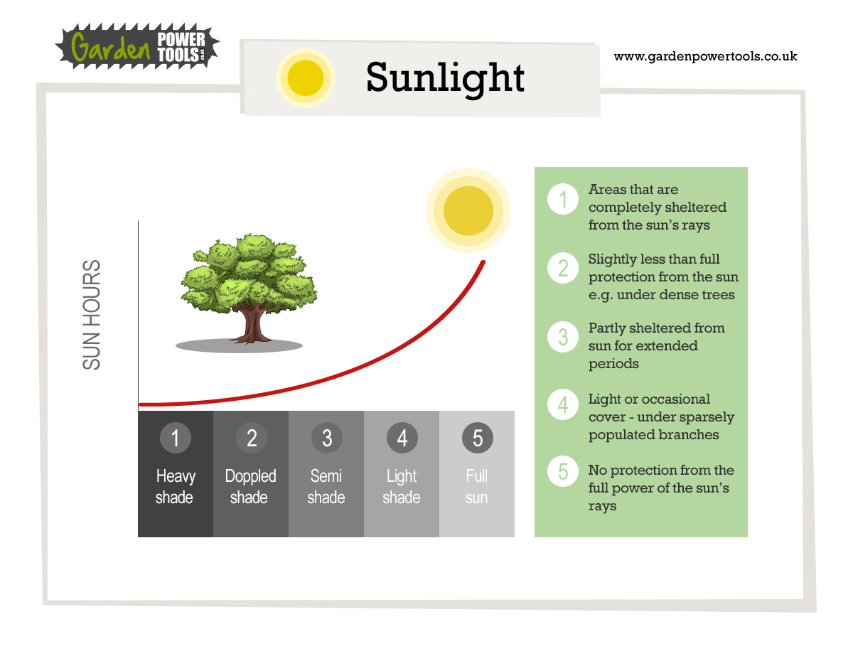 sunlight and levels of shade for plants