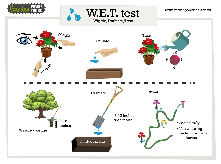 The WET test