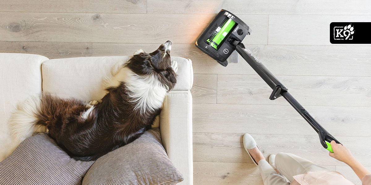 New Gtech Airram K9 Critical Review Revisited For 2018