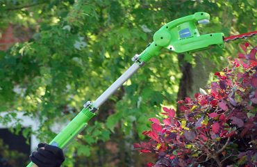 GTech Cordless Hedge Trimmer HT20 (2019 Updated Review)