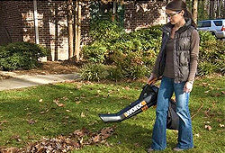 Worx Corded Leaf Blower