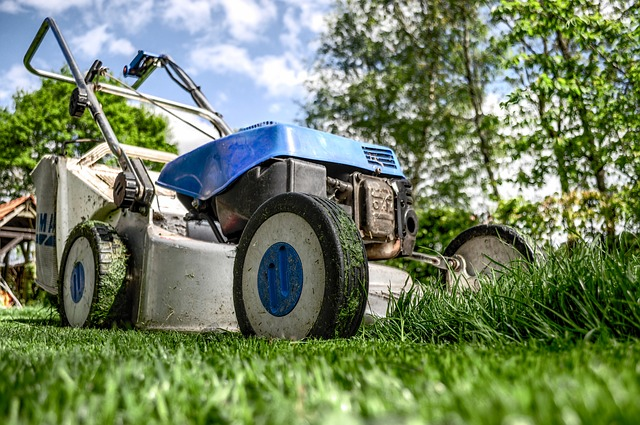 Lawn Mowing the Lawn