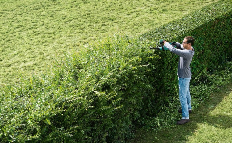Perfectly trimmed hedges with the Bosch AHS 50-20 Cordless Hedge Trimmer