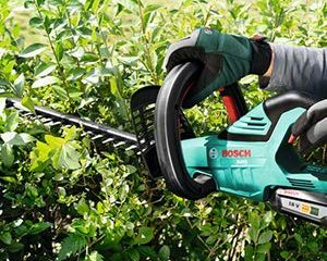 Trimming Hedges with the Bosch AHS 50-20 Cordless Hedge Trimmer
