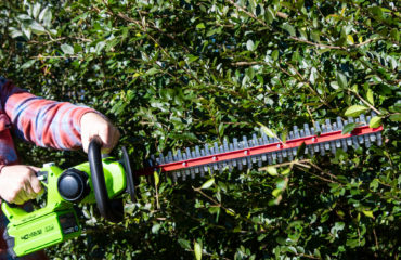 Trimming Hedges with the Greenworks 40V Cordless Brushed Hedge Trimmer