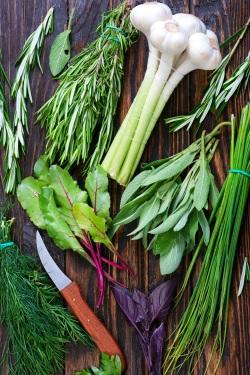 Home Grown Garden Herbs