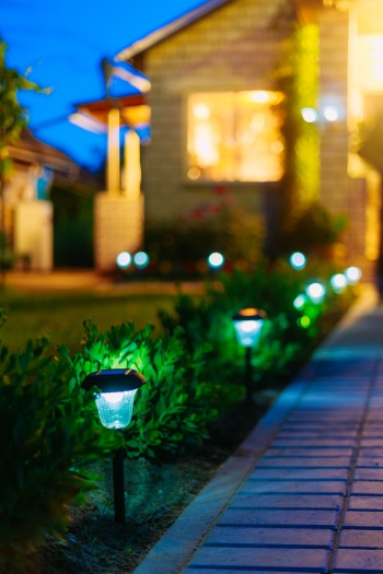 Lights at night in garden