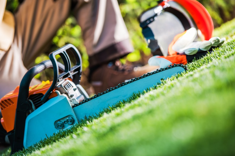 Chainsaw lying on grass in garden