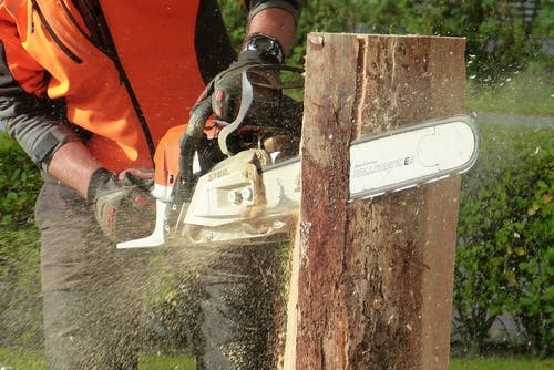 Chainsaw for landscaping
