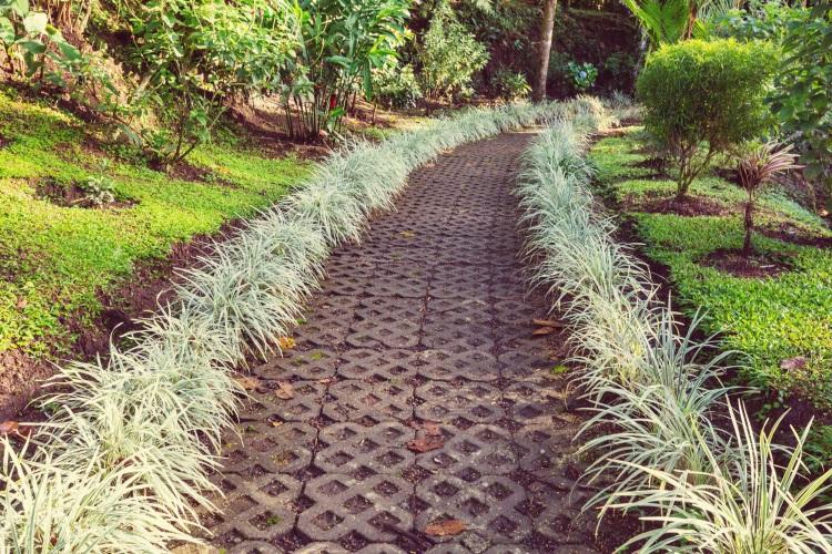 Clear garden pathway