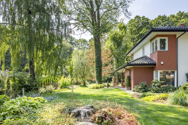 Beautiful Landscape with Garden Trees