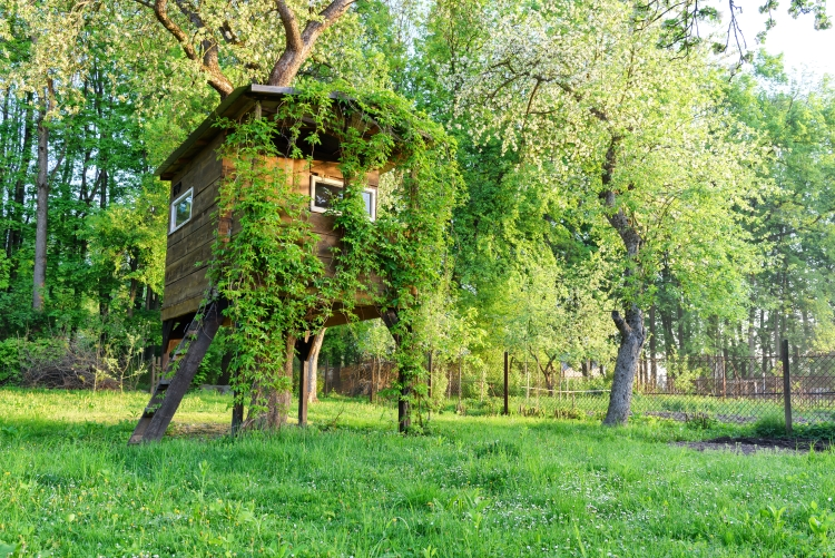 Incredible tree house in garden