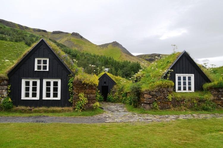 Flat Green Garden Roof