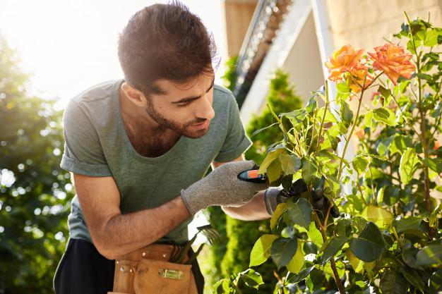 Man Wearing Gloves for Gardening