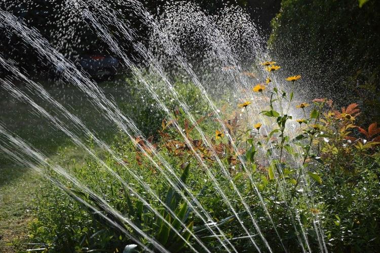 Water Sprinkler System in Garden
